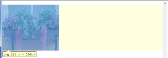 max-widthプロパティによる広げたウィンドウサイズでの表示